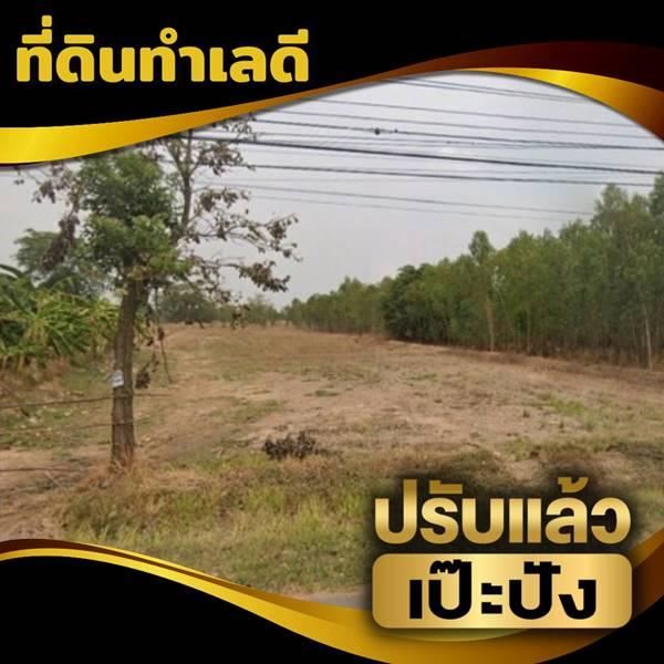 ขายที่ดินติดถนนใหญ่ 6 เลน ลำปลายมาศ ใกล้ศูนย์กระจายสินค้า CP โทร 0640494652